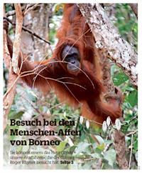 Artikel Roger Rhyner in der SüdOstSchweiz