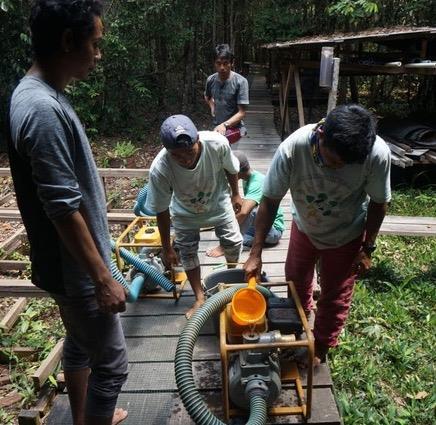 2550 Orang-Utan-Leben in Gefahr