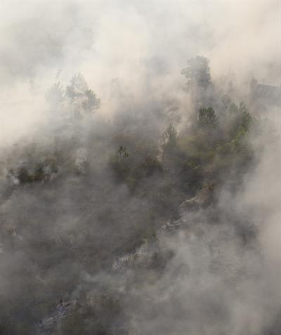 Waldbrände: Notstand ausgerufen
