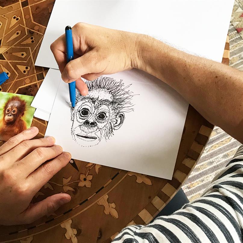 Orang-Utan-Zeichnung in der Entstehung