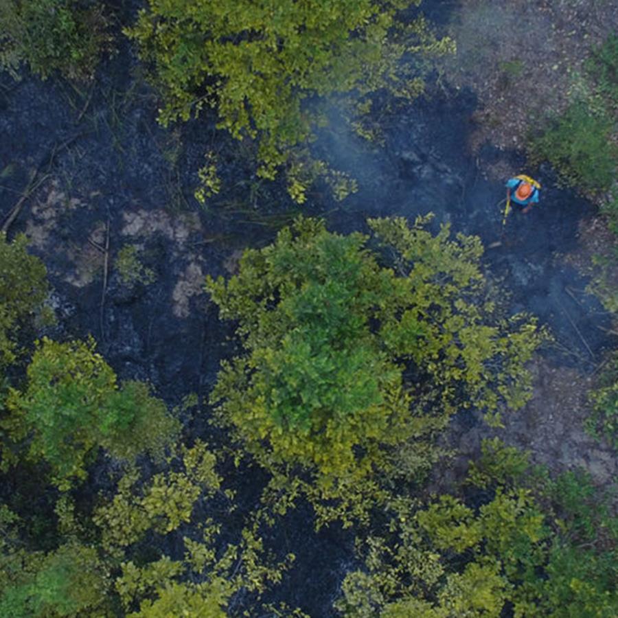 Brände im Mawas-Gebiet aus der Vogelperspektive