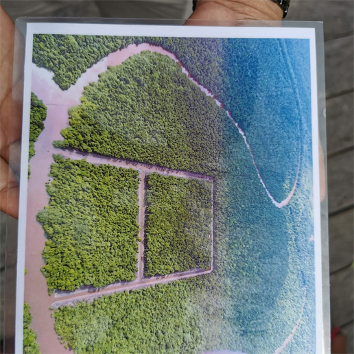 Karte von Salat Island