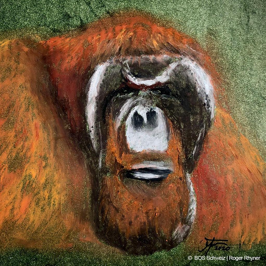 Ein mit Ölkreide gemaltes Orang-Utan-Männchen