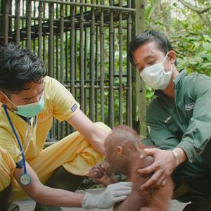 Zwei BOS-Mitarbeitende führen eine medizinische Untersuchung durch