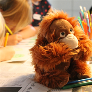 Kinder malen am Kinderworkshop von BOS Schweiz Orang-Utans
