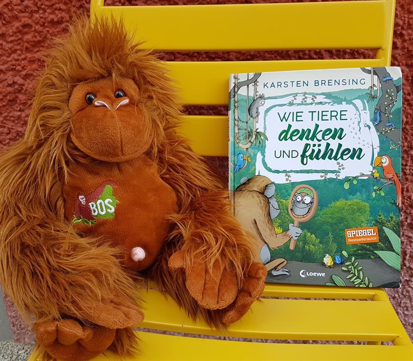 Plüsch-Orang-Utan mit dem Kinderbuch «Wie Tiere denken und fühlen»