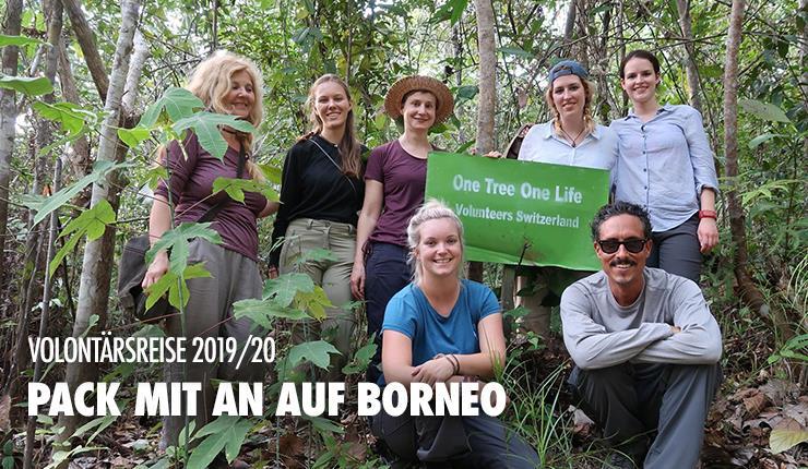 Mach mit! Als Volontär/in von BOS Schweiz in Borneo