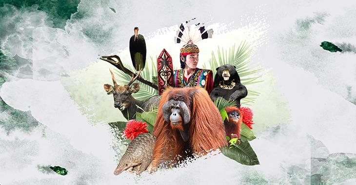 Visual zum Tag des Artenschutzes