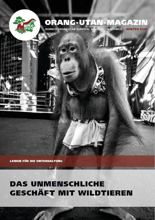 Orang-Utan-Magazin Winter 2020