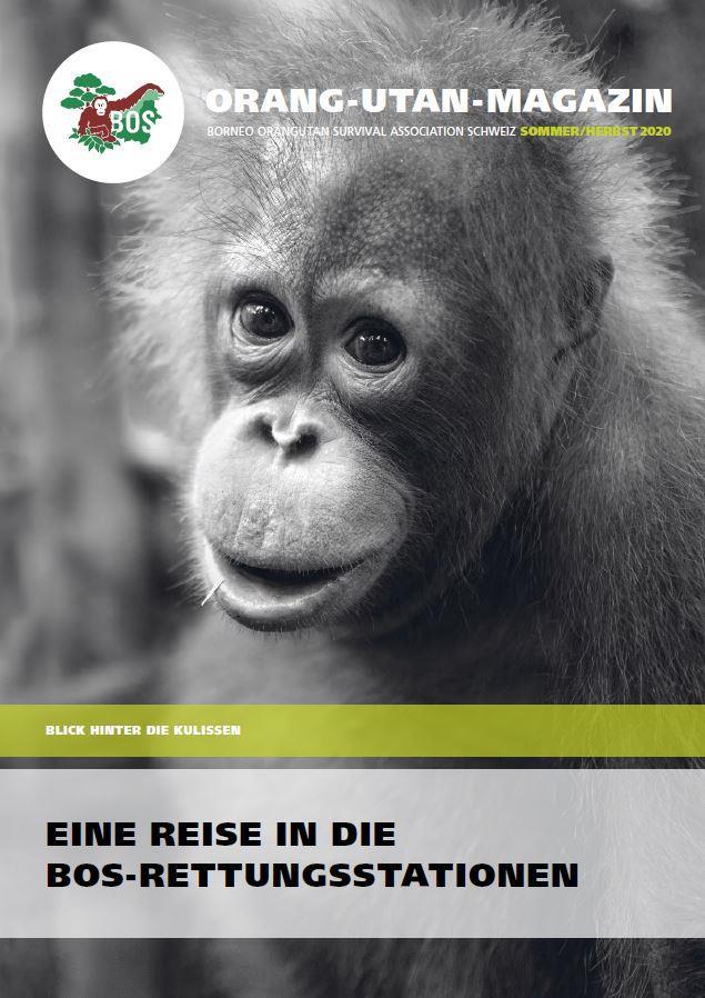 Orang-Utan-Magazin Sommer/Herbst 2020