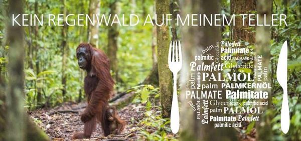 Flyer: Kein Regenwald auf meinem Teller