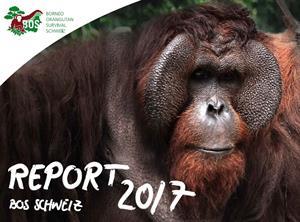 Jahresbericht BOS Schweiz 2017