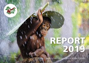 Vorschau Jahresbericht 2019