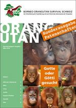 Orang-Utans-News Ausgabe November