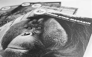 Das Orang-Utan-Magazin