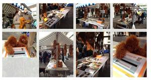 Orang-Utans auf dem Weihnachtsmarkt