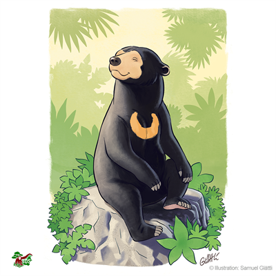Malaienbären-Motiv, gestaltet von Samuel Glättli