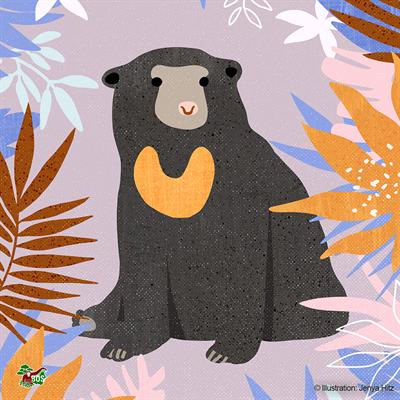 Malaienbären-Motiv, gestaltet von Jenya Hitz