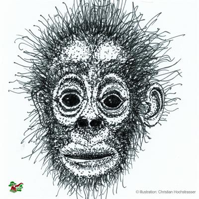 Orang-Utan-Motiv, gestaltet von Christian Hochstrasser