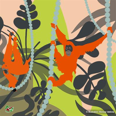 Orang-Utan-Motiv, gestaltet von Monica Valdivia