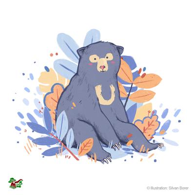 Malaienbären-Motiv, gestaltet von Silvan Borer