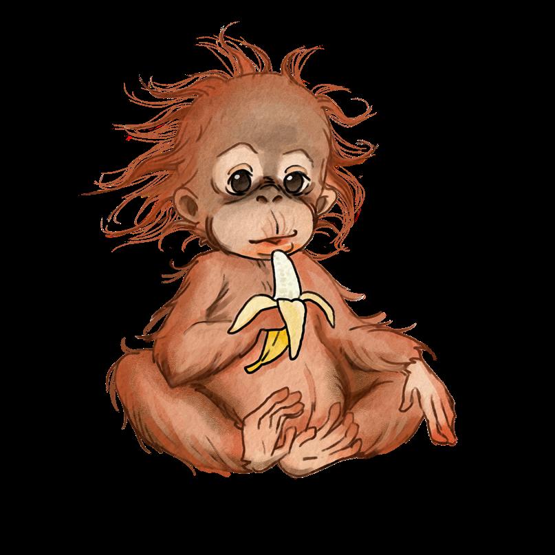 Illustration eines Baby-Orang-Utans
