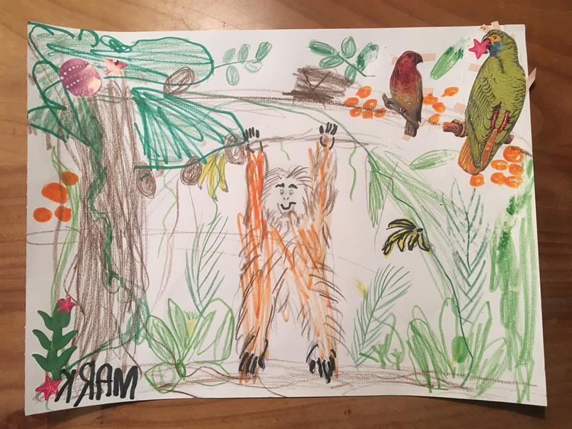 Eine Kinderzeichnung mit einem Orang-Utan im Regenwald