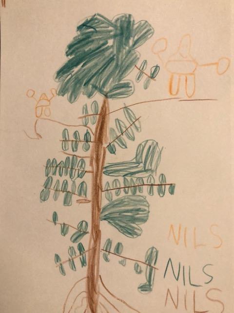 Kinderzeichnung zweier Orang-Utans auf einem Baum
