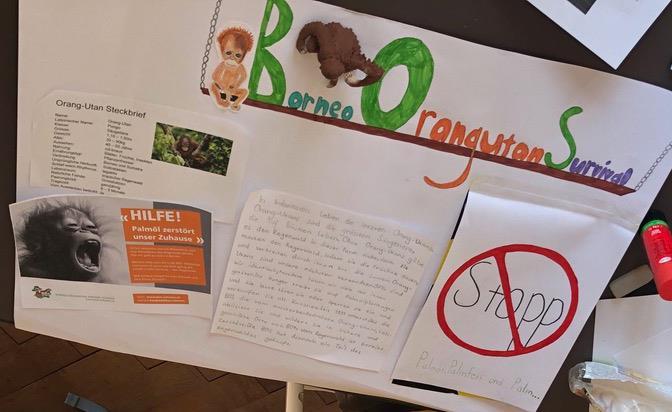 Plakat für einen Orang-Utan-Vortrag, gestaltet von Olga, 4. Klasse