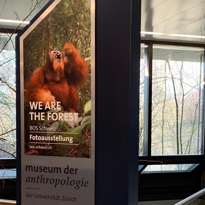 BOS Schweiz-Fotoausstellung im Museum der Anthropologie in Zürich