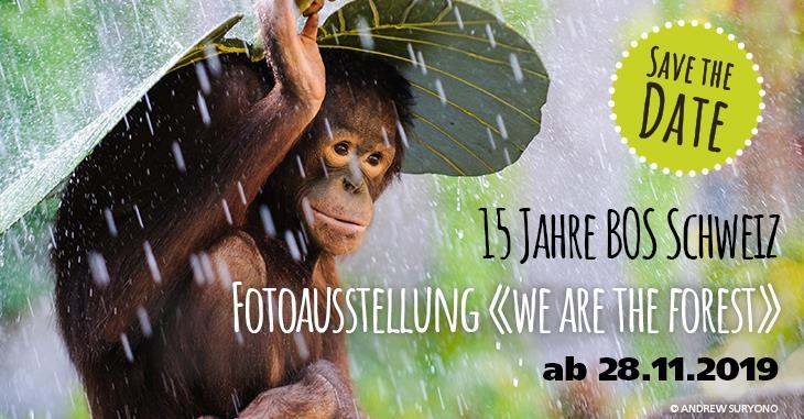 «We are the forest» bis 22. Dezember in der Photobastei Zürich. Der Eintritt ist