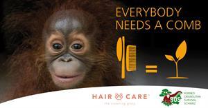 Kämme und Bürsten für die Orang-Utans